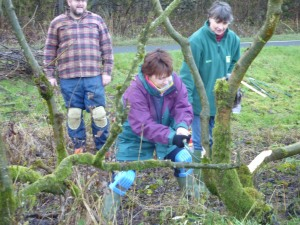 Hedgelaying Course Tuition